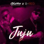 VIDEO: DJ KayWise x B Red - Juju