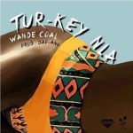 Lyrics: Wande Coal - Turkey Nla