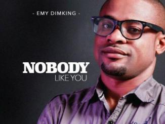 MP3: Emy Dimking - Nobody Like You