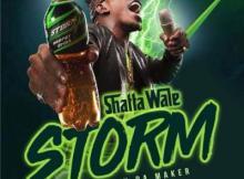 MP3: Shatta Wale - Storm (Prod. by Willis Beatz)