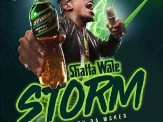 MP3: Shatta Wale - Storm (Prod. by Willis Beatz)