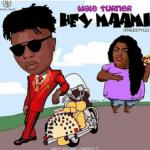 MP3: Wale Turner - Hey Maami (Freestyle)