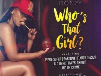 MP3: Donzy - Who's That Girl Ft. Piesie, B4Bonah, Flyboy, Obra, Kwesi Arthur & Dr. Cryme