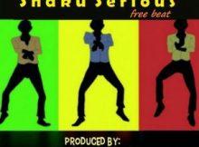 Freebeat: Shaku Serious (Prod By Kayzroid)