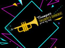 MP3: Tim Godfrey - Trumpet Ft. Soundcheck