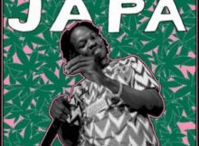 (Lyrics) Naira Marley - Japa