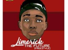 (Mp3+Video) Limerick - The Future [Freestyle]