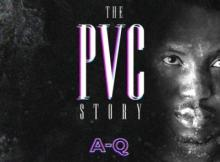 (Song) A-Q - The PVC Story