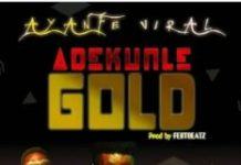 Instrumental: Adekunle Gold - Ayanfe Viral (Remake By Fest Beatz)