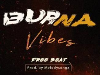 Freebeat: Burna Vibes (Prod. By MelodySongz)