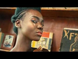 VIDEO: Fuse ODG - New African Girl Ft. KiDi x Kuami Eugene