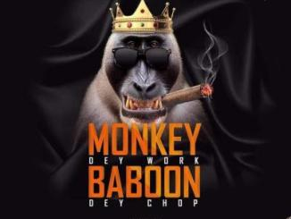 MP3 : Captain Planet - Monkey Dey Work Baboon Dey Chop