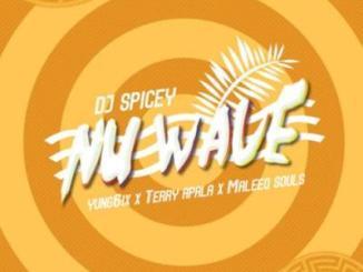 VIDEO: DJ Spicey x Yung6ix x Terry Apala x Maleeq Souls - Nu Wave