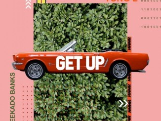 MP3: Yung L Ft. Reekado Banks - Get Up