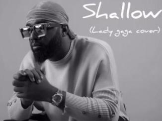 MP3: Praiz - Shallow (Lady Gaga Cover)