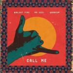 MP3: Walshy Fire ft Mr Eazi & Kranium - Call Me