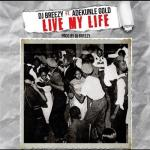 MP3: DJ Breezy - Live My Life Ft. Adekunle Gold