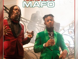 MP3: Naira Marley - Mafo Ft. Young Jonn