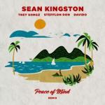 MP3: Sean Kingston - Peace Of Mind (Remix) Ft. Davido, Stefflon Don, Trey Songz