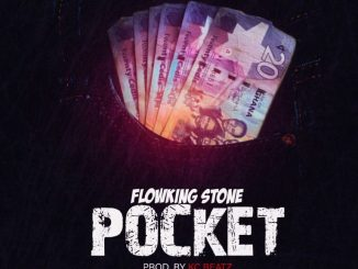MP3: Flowking Stone - Pocket