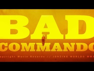 Lyrics: Rema - Bad Commando