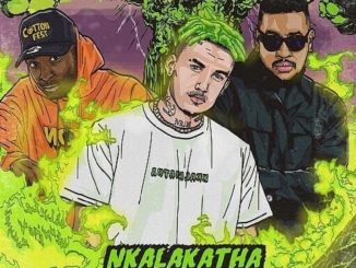 MP3: Costa Titch - Nkalakatha (Remix) Ft. AKA x Riky Rick