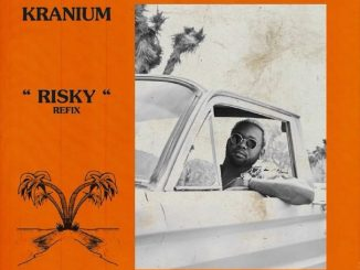 MP3: Kranium - Risky (Refix)