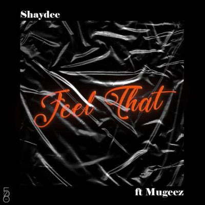 MP3: Shaydee - Feel That Ft. Mugeez