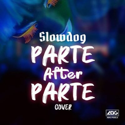 MP3: Slowdog - Parte After Parte (Cover)