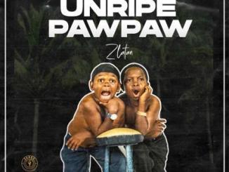 MP3: Zlatan - Unripe Pawpaw Ft. PapiSnoop x Oberz x JamoPyper