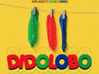 MP3: Naira Marley x C Blvck x Mohbad - Didolobo (Prod. Rexxie)
