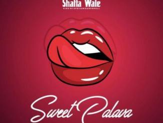 MP3: Shatta Wale - Sweet Palava (Prod. Beatz Vampire)