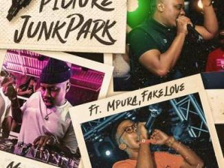 Mr JazziQ - Picture JunkPark ft. Mpura, Fakelove