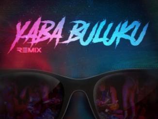 DJ Tarico x Burna Boy - Yaba Buluku (Remix) ft. Preck, Nelson Tivane
