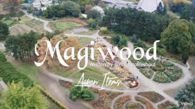 Magnito - Magiwood ft. Bovi