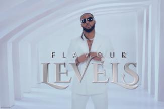 Video: Flavour - Levels