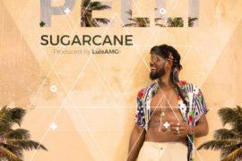 MP3 : Pelli - Sugarcane