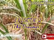 VIDEO: Blossom Comedy - The Dreamer (Episode 2)