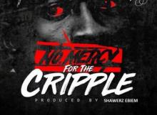 MP3: Shatta Wale - No Mercy For The Cripple (StoneBwoy Diss)