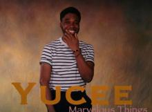 MP3: Yucee - Marvelous Things