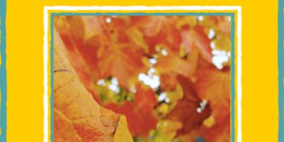 Autumn Season- Ayurvedic Health and Diet Tips (1)