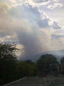 Songdove Books - local forest fire
