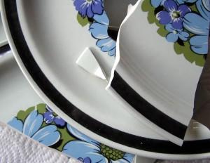 Songdove Books - broken plate