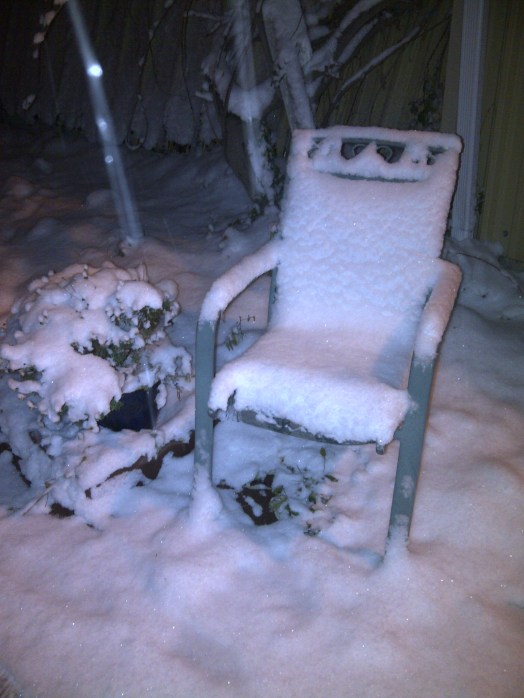 Songdove Books - Snow-covered chair