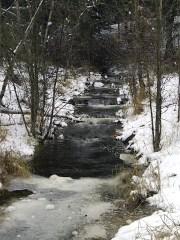 Songdove Books - Mission Creek Park