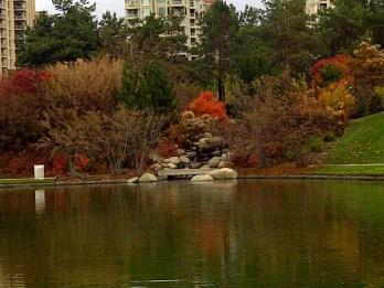 Songdove Books - Fall fountain colours