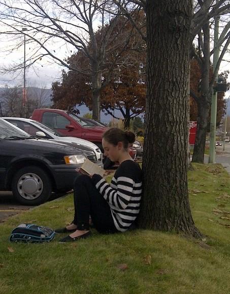 Songdove Books - Girl reading under Autumn Tree