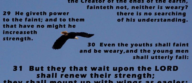 Songdove Books - Isaiah 40:28-31