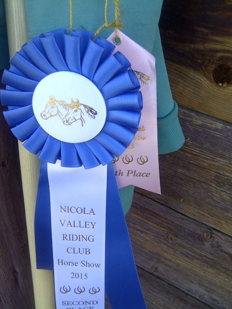 Songdove Books - 2nd and 6th place ribbons