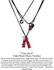 lot concours st valentin-twilight-collier-team-jacob
